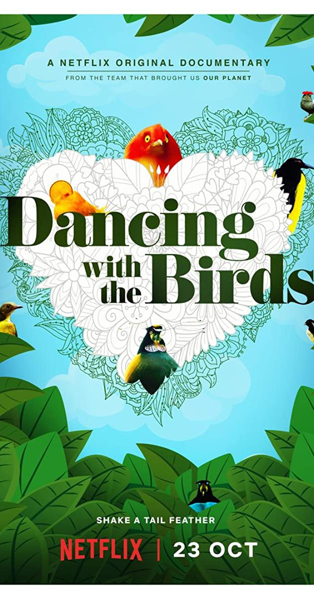 Download Dancing with the Birds or watch streaming online complete episodes of  Season1 in HD 720p 1080p using torrent
