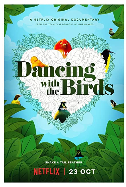 Film: Dancing with the Birds