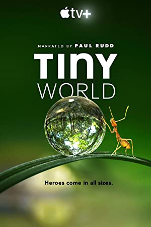 Tiny World : Season 1 Complete WEBRip 720p | GDRive | MEGA | 1DRive | Single Episodes