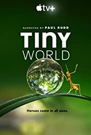 Tiny World Saison 2