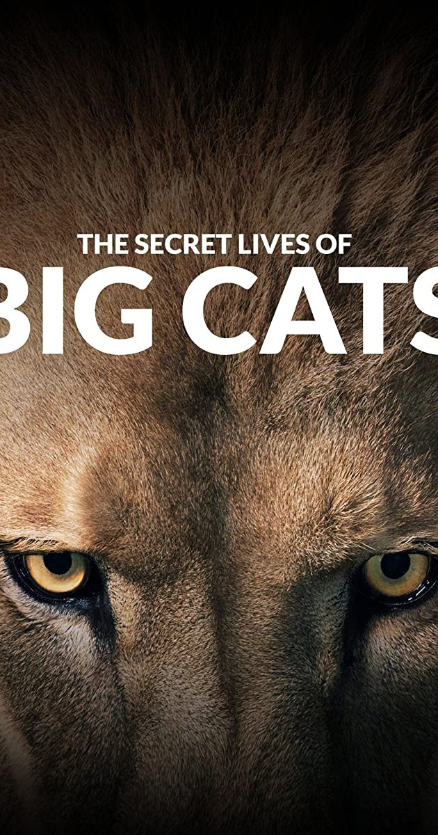 The Secret Lives Of Big Cats S01 1080p HMAX WEBRip DD2 0 x264-monkee[rartv]