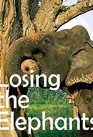 Losing the Elephants (2011)