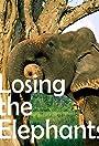 Losing the Elephants