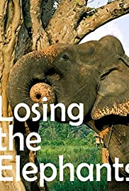 Losing the Elephants Poster