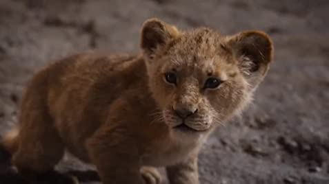 Download The Lion King 2019 Movie The Lion King 2019