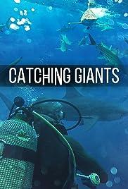 Catching Giants: Zambezi Shark Poster