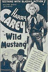 Primary photo for Wild Mustang