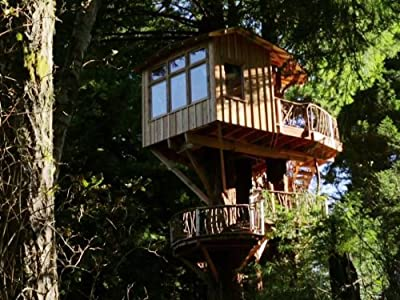 Sky High Redwood Retreat