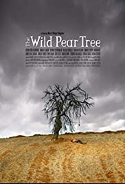 Making of the Wild Pear Tree Poster