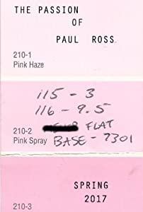 Good free downloading movie sites The Passion of Paul Ross [480i]