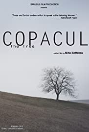 Copacul Poster