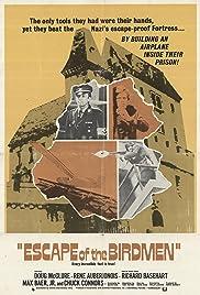 The Birdmen(1971) Poster - Movie Forum, Cast, Reviews