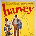 James Stewart in Harvey (1950)