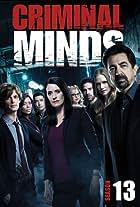 Criminal Minds: Season 13 - Thirteen Minds