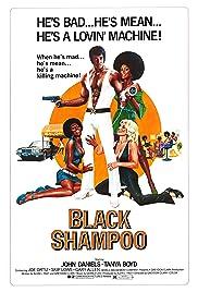 Black Shampoo(1976) Poster - Movie Forum, Cast, Reviews