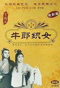 Primary photo for Niu lang zhi nü