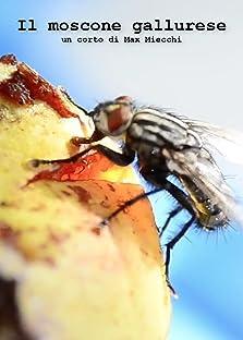 Il moscone gallurese (2020)