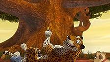 Speedy As A Cheetah/The Soup Search