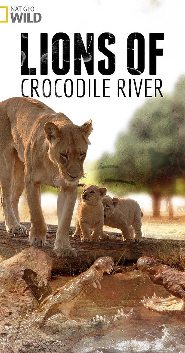 Lions of Crocodile River