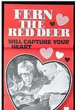 Fern, the Red Deer