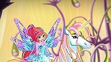 New Magic Harmony