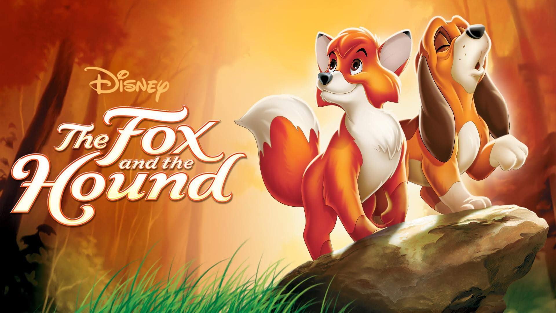 The Fox And The Hound 1981 Photo Gallery Imdb