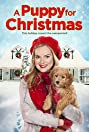A Puppy for Christmas (2016) Poster