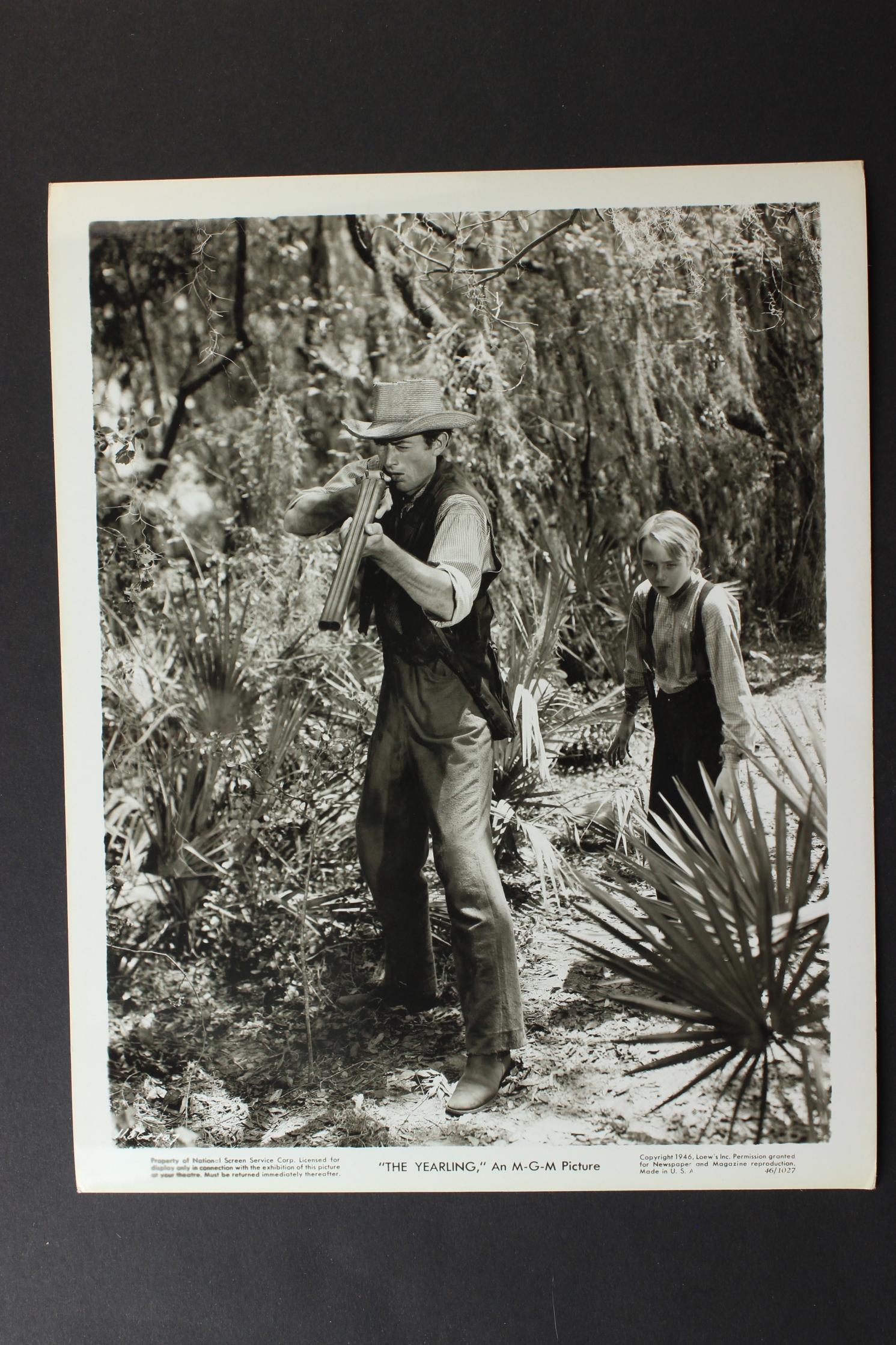 The Yearling (1946) - Photo Gallery - IMDb