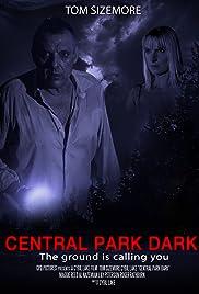 Central Park Dark Poster