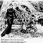 Sônia Braga in Kiss of the Spider Woman (1985)