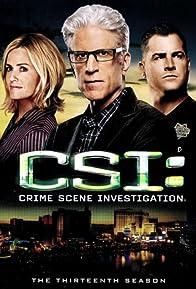Primary photo for CSI: Crime Scene Investigation - Season 13: Providing Food and Shelter