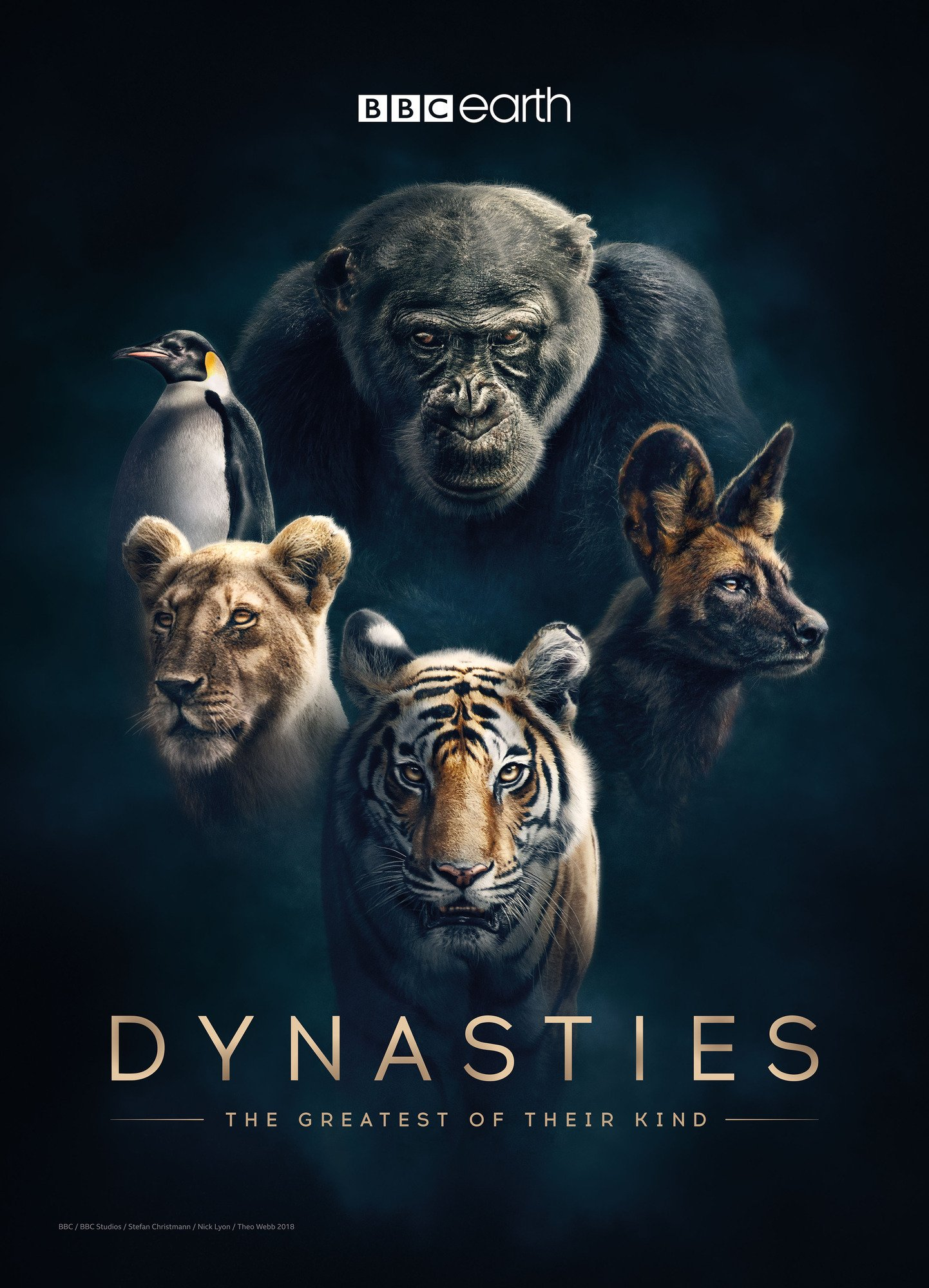 Image result for Dynasties (2018)
