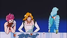 Time to Believe the Pegasus! The Super Transformations of the Sailor Senshi