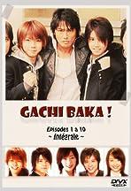Gachibaka!
