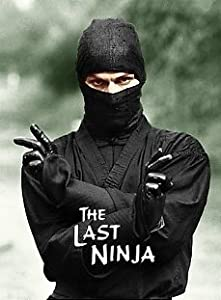 The Last Ninja full movie in hindi 720p download