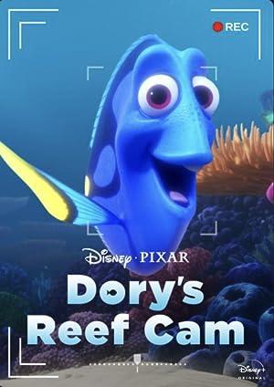 Dorys Reef Cam