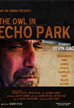 The Owl in Echo Park