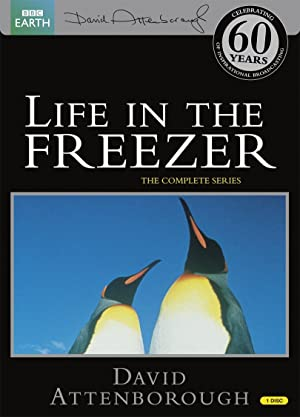 Where to stream Life in the Freezer
