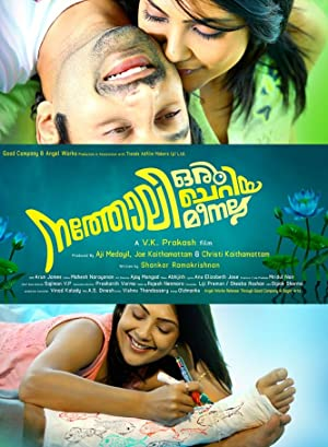 Where to stream Natholi Oru Cheriya Meenalla