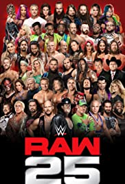 WWE Raw 25 Years Poster