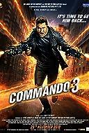 Command 3