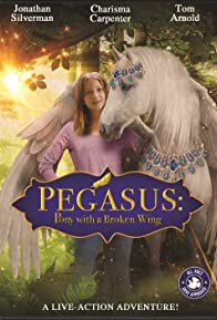 Primary photo for Pegasus: Pony with a Broken Wing