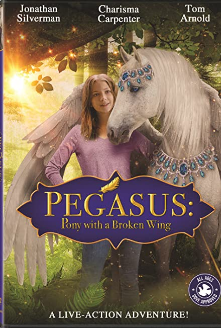 Film: Pony with a Broken Wing