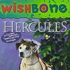 Wishbone (1995)