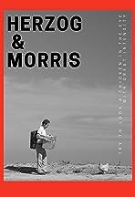 Herzog & Morris
