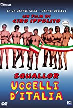 Primary image for Uccelli d'Italia