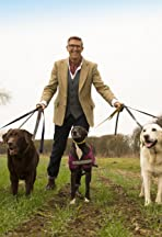Dogs Behaving (Very) Badly