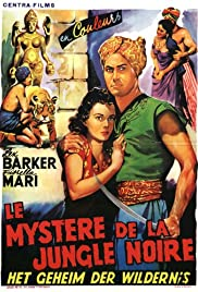 Mystery of the Black Jungle Poster