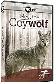 Nature: Meet the Coy-wolf Poster