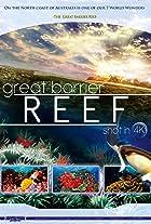 Great Barrier Reef 4K